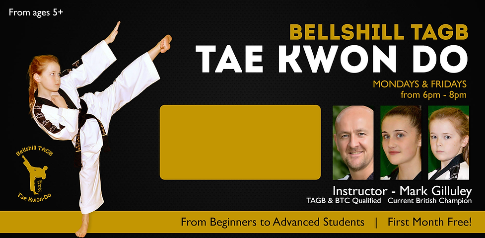 tae kwon do.png