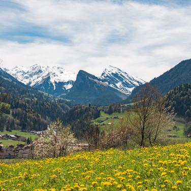 Blick auf Schwarzenberg und Wiriehorn