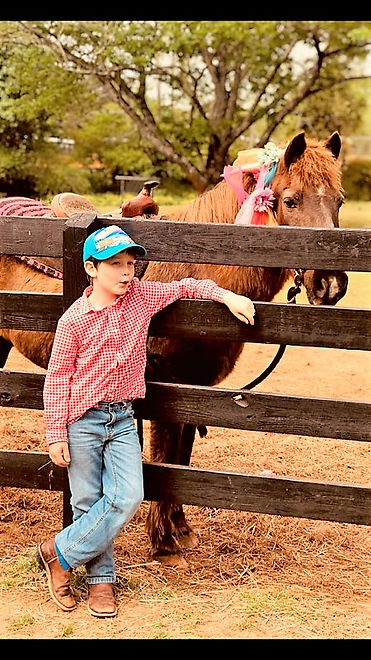 Young boy with a pony jpeg