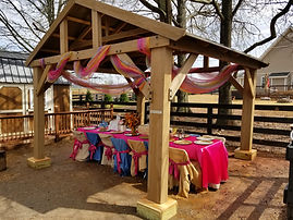 decorated pony party table and chairs