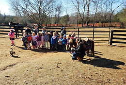 Kids pony party
