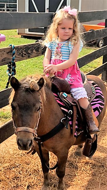 Kid on a pony