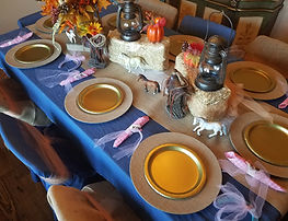 decorated pony party table ad chairs