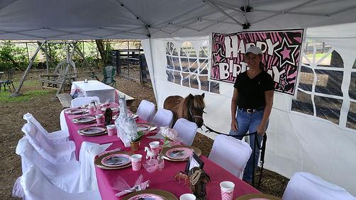 Pony party tent