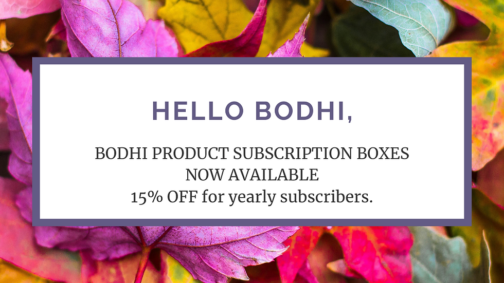 Small Subscription Box - Year