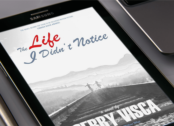 The Life I Didn't Notice e-book