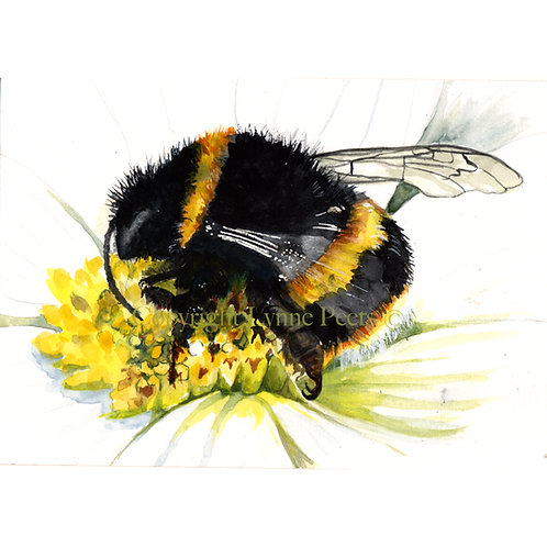 Bumble Bee by Lynne Peets -SOLD