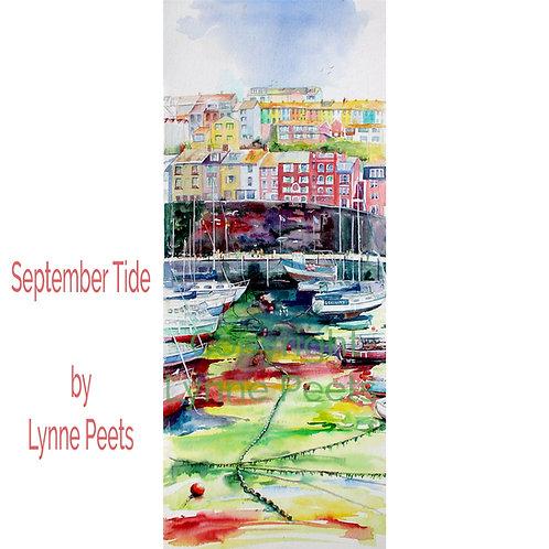 Brixham Harbour - Lynne Peets