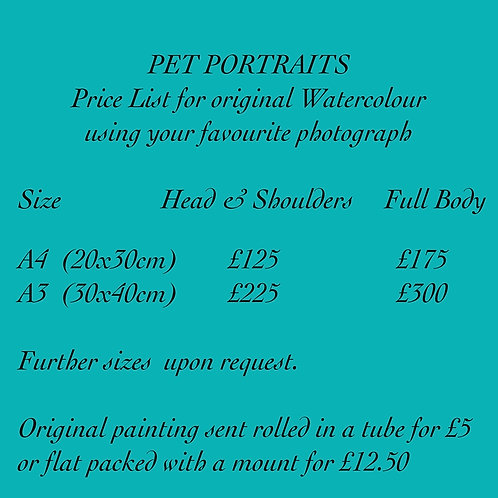 Pet Portrait Price List