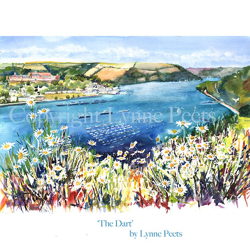 'The Dart'.