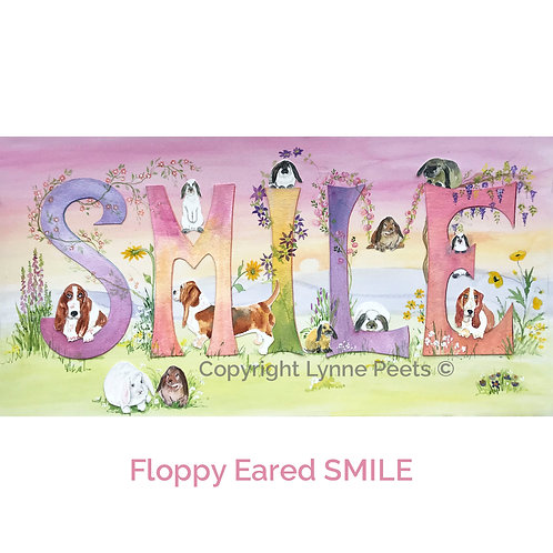 Floppy Eared Smile
