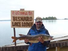 Besnard-Northern-Pike-Walleye-19.JPG
