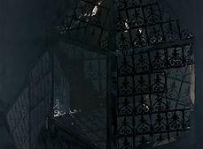 cage-1442779036.jpg
