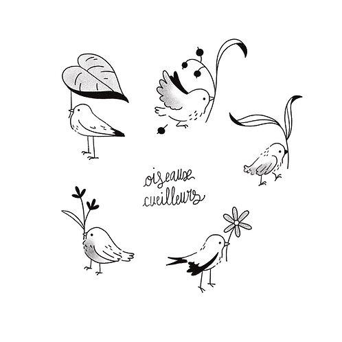 Oiseaux cueilleurs