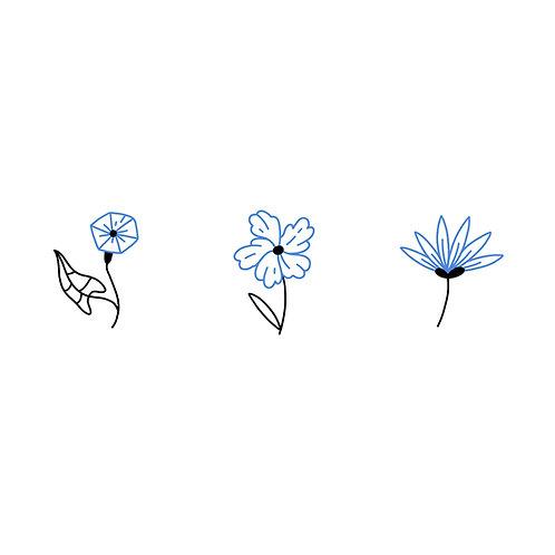 Petite bleue 3