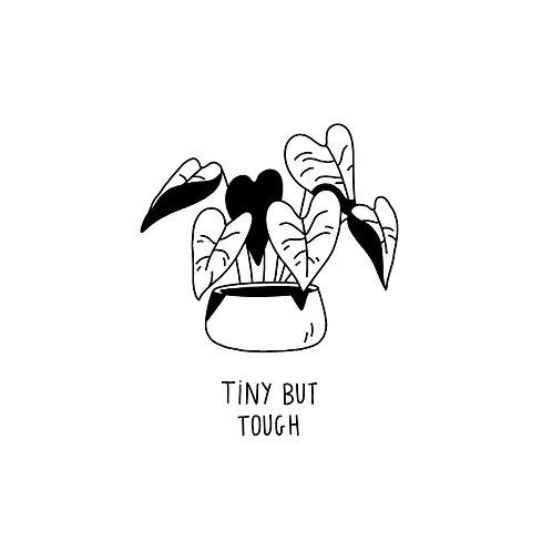 Tiny but tough