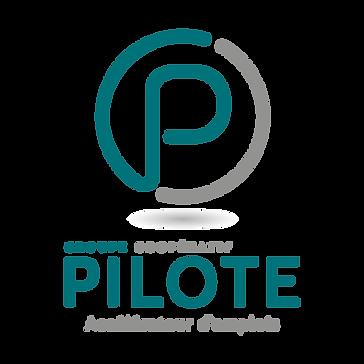 Logo_Pilote.png