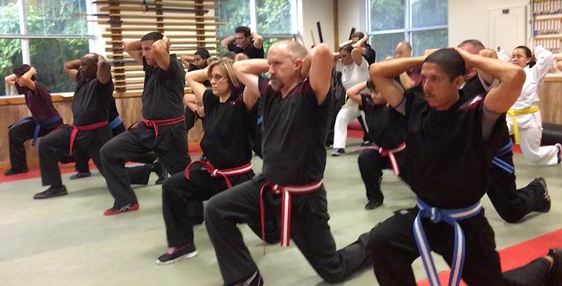 fun, exercise, self-improvement, self-defense, community, camaraderie, empowered, self-defense, mma, jujutsu