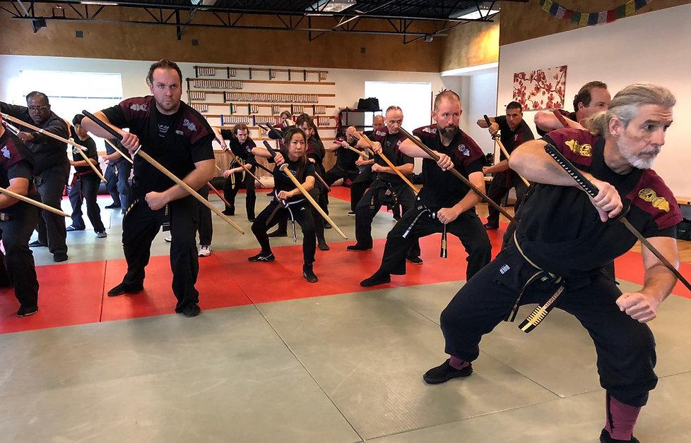swords, weaponry, adult self-defense, mma, jujitsu, martial arts, friendship, community