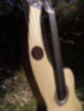 Fretless harp guitar