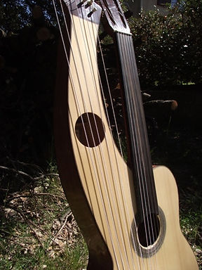 Fretless harp guitar
