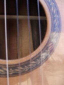 Rosette guitar