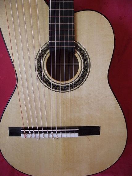 Harp guitar Khaya & Spruce 1 | Gard | Sean Woolley Luthier Harp Guitar