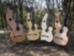 Dyer harp guitar