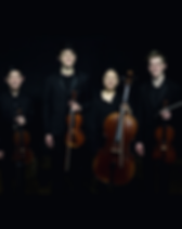 2020 Helios String Quartet- square.png