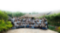 carrier banner (1).png