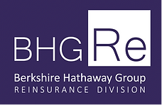 AAA_BHG Re Logo 2019 (00000).png
