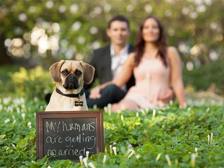 Quando enviar o Save the Date ou Convite de Casamento Virtual