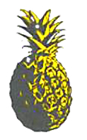 KB%252520PINEAPPLE_edited_edited_edited.