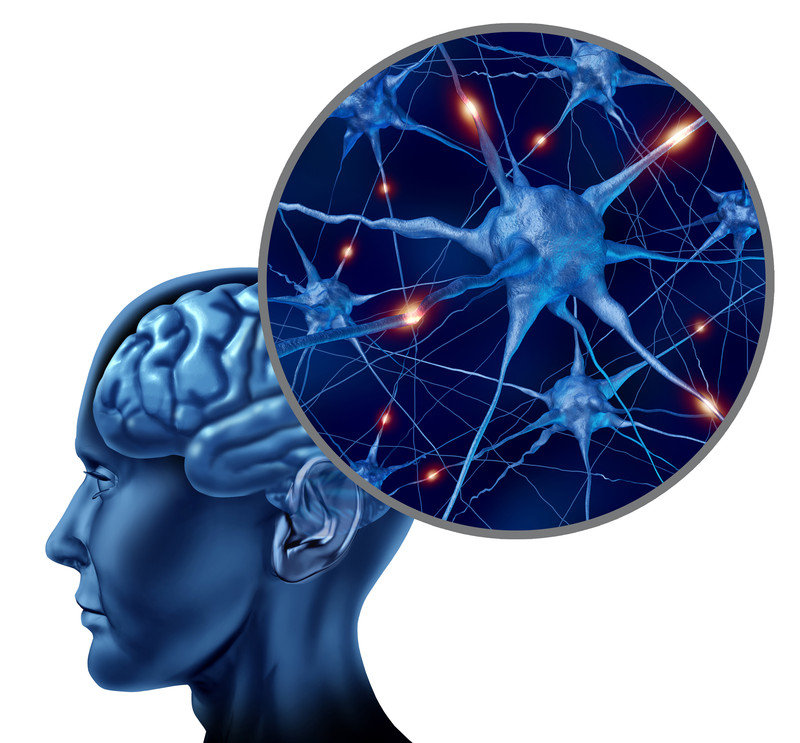 Bilan Mémoire Neuropsychologie