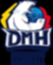 DMH_logo_quadri-2017-1-1.png