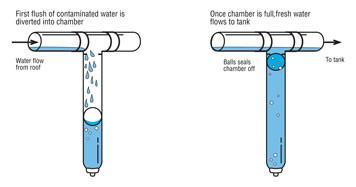 First flush diverter