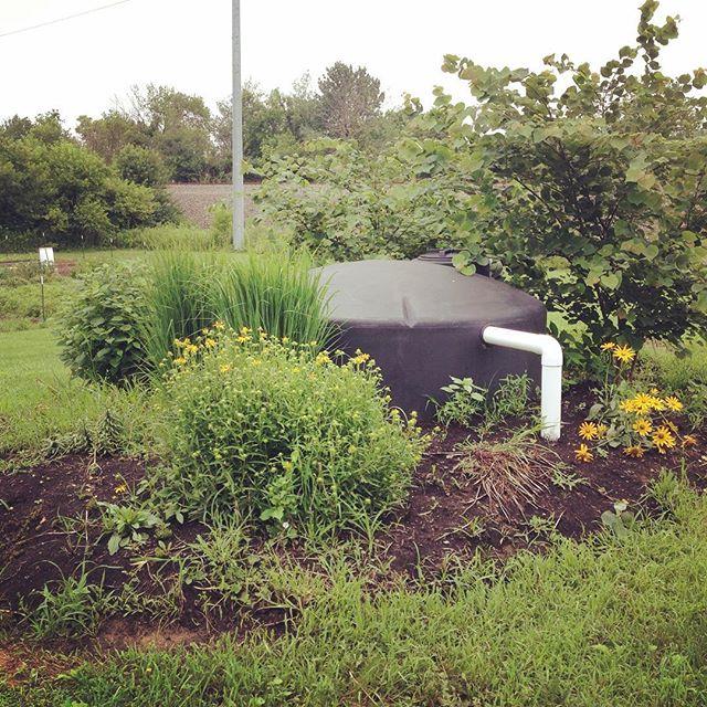 Hidden rain tank