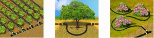 Rain barrel drip irrigation