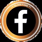 Facebook%20Likes%20Medal%20%20_edited.pn