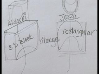 Sketching the Rib Cage