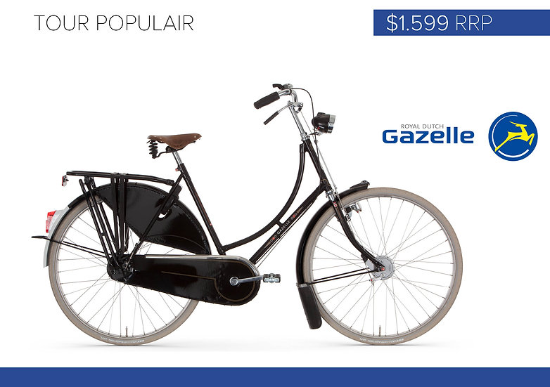 Gazelle Tour Populair (Men's Frame Only)