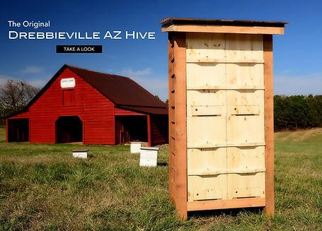 Drebbieville AZ Hive.jpg