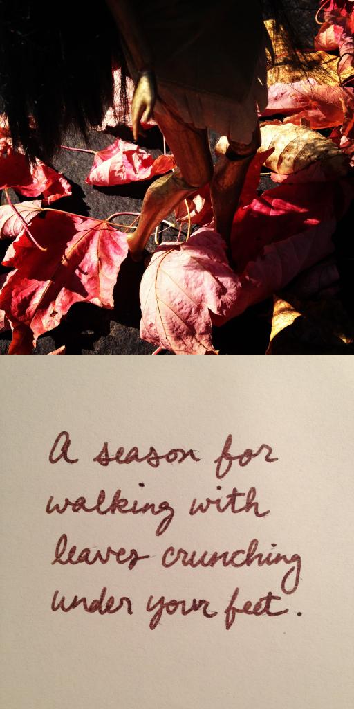 leaves-i.jpg