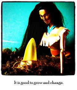 grow-and-change.jpg