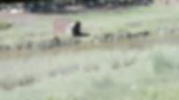 Screen Shot 2020-04-20 at 09.49.48.png