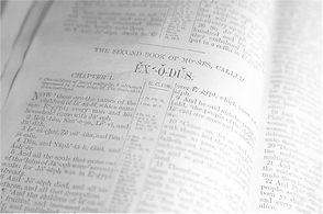 Bible Light 480.jpg