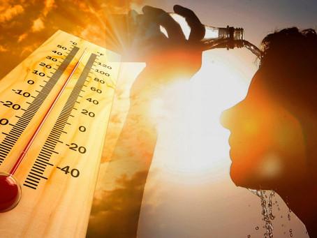 Советы КОЦ «Пульс» в жаркое время года