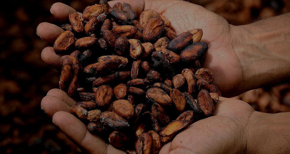 Kakao Zeremonie