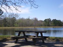 OL picnic table