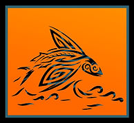 Flying Fish Design